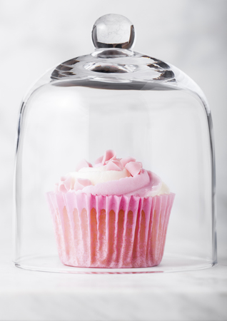 Cupcake muffin with raspberry cream dessert on marble background with pink candies