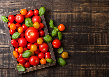 Organic Tomatoes with basil in vintage wooden box on wooden kitchen background. Stock Photo