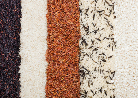 Fresh raw organic black venus and red rice,long grain basmati and wild rice.Healthy food.