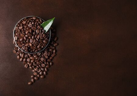 Fresh raw organic coffee beans with coffee trea leaf on brown. Space for text