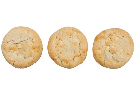 White chocolate biscuit cookie on white.
