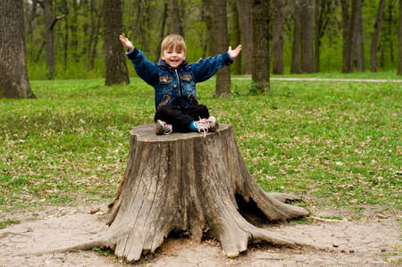 The spring, wood, the little boy sits on the stump Stock Photo - 4941492