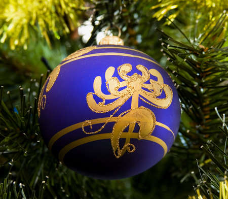 weighs: The beautiful dark blue Christmas-tree decoration weighs on a fur-tree branch