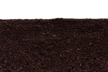 Close-up of organic soil. Can be used as background. Stock Photo