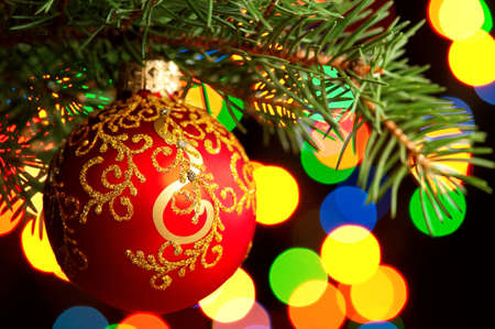 Red bauble on green christmas firtree on abstract blue background photo