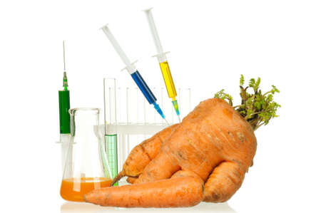 Genetically modified organism - ripe carrot with syringes and laboratory glassware on white background Stock Photo - 12012890