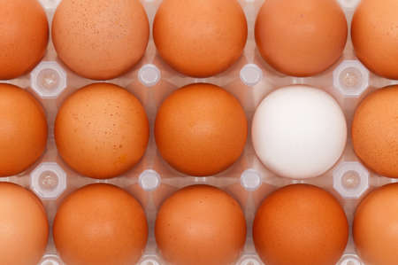 Close-up of brown and white eggs in the plastic box photo