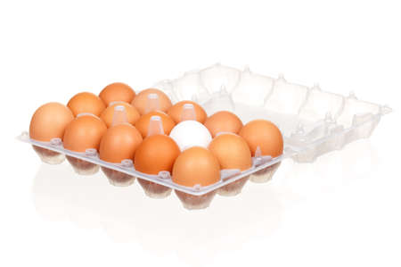 Brown and white eggs in the plastic box over white background Stock Photo - 12075439