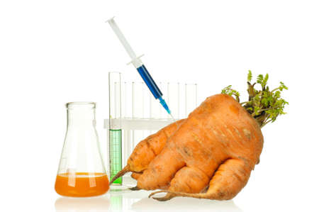 modified: Genetically modified organism - ripe carrot with syringes and laboratory glassware on white background Stock Photo