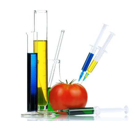 Genetically modified organism - ripe tomato with syringes and laboratory glassware on white background photo