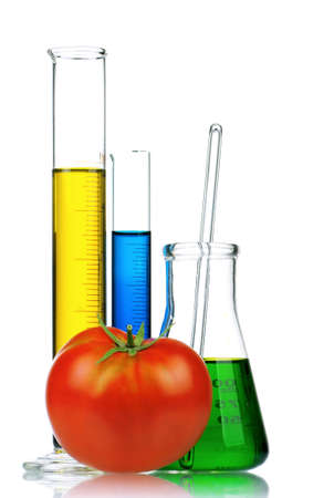 genetically modified organism: Genetically modified organism - ripe tomato with syringes and laboratory glassware on white background
