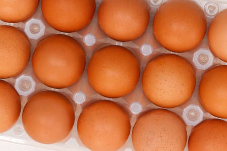Close-up of brown eggs in the plastic box photo