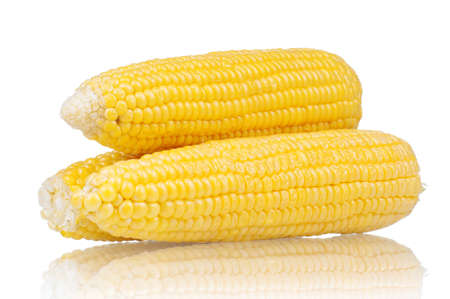 corn kernel: Fresh an ear of corn on a white background Stock Photo