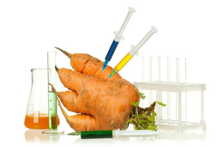 genetically modified organism: Genetically modified organism - ripe carrot with syringes and laboratory glassware on white background Stock Photo