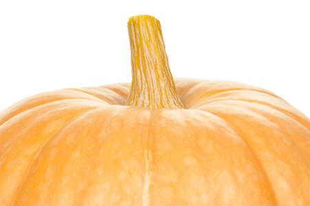Close up of a big pumpkin on white background photo