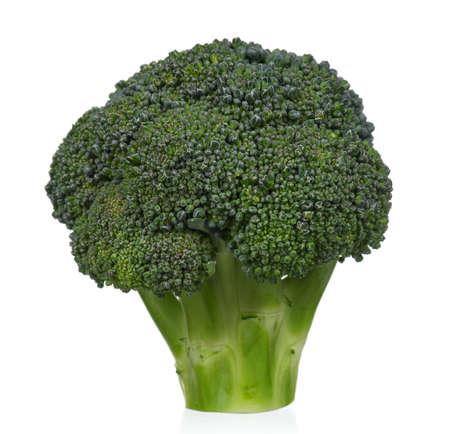 Fresh ripe broccoli piece on white background Stock Photo - 15408224