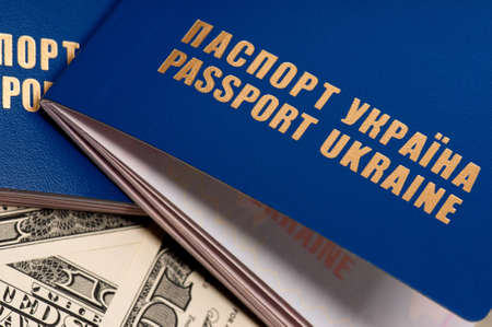 Two international Ukrainian passport on US dollars background Stock Photo - 15408935