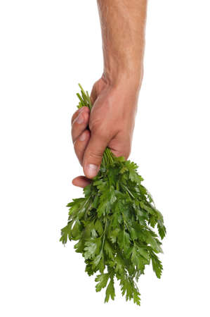 Man hand with fresh parsley isolated on white background photo