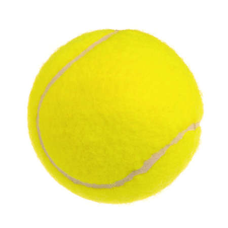 lawn tennis: Single tennis ball isolated on white background