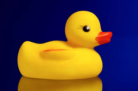 Cute yellow rubber duck on blue background photo