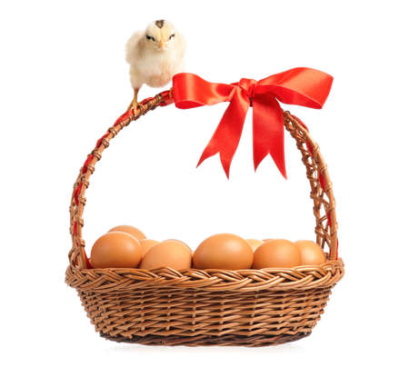 Chickens with basket