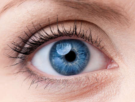 female eyes: Beautiful blue woman single eye close up