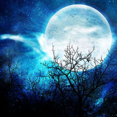 tonto: ilustraci�n de la noche con una luna del tonto