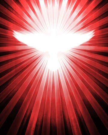 shining dove with rays on red photo