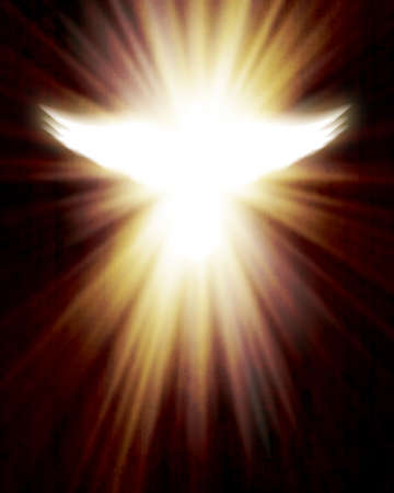 shining dove with rays photo