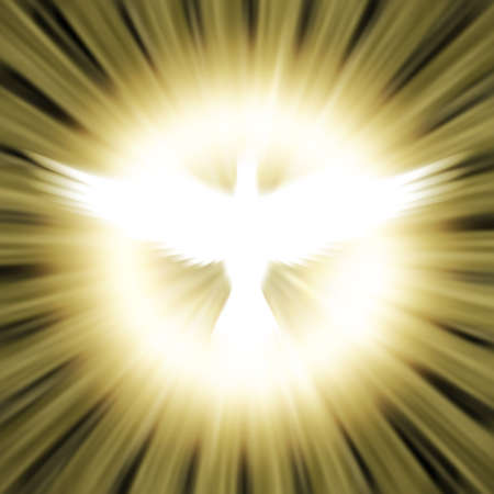 holy symbol: dove against glowing background