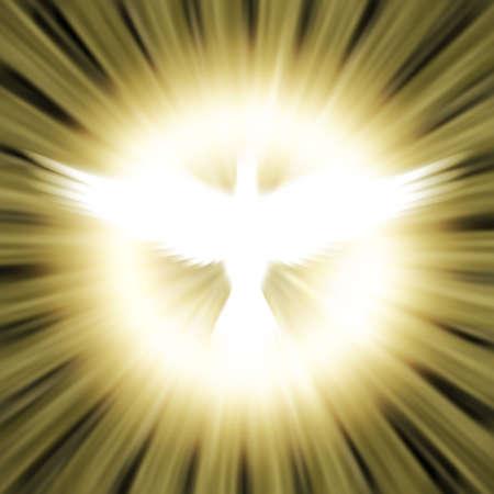 espiritu santo: paloma contra el brillante fondo