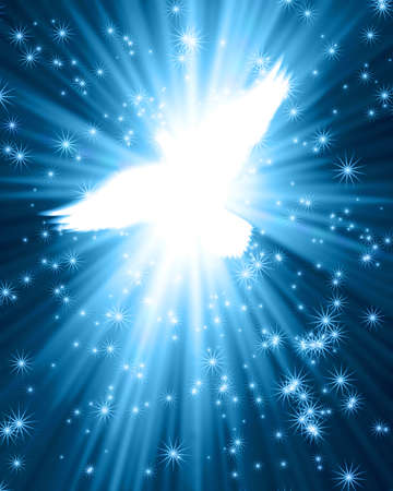 soaring: flying dove against glowing background with stars