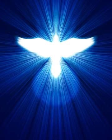 glühenden Taube gegen den blauen Strahlen