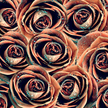 valentine's background with roses photo