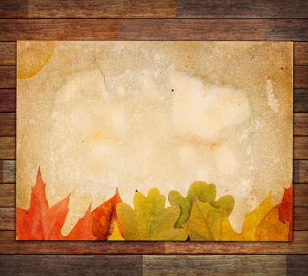 Autumn Leaves on the Old Paper sheet photo