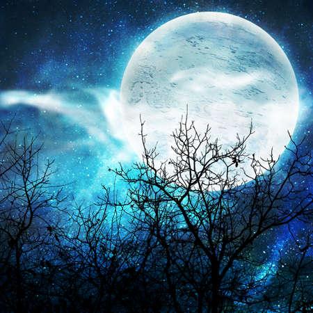 ilustración de la noche con una luna del tonto