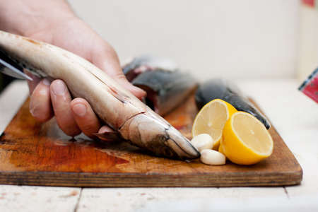 biphenyl: Fishermen cleaning and filleting a fresh caught fish  Stock Photo