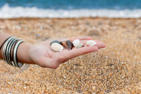 hands with sea shells photo