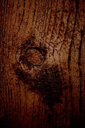 rudely: dark brown wooden texture Stock Photo