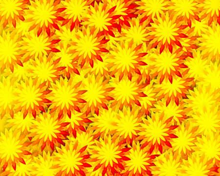 grunge field of yellow flowers photo