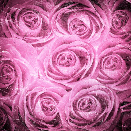 valentines background with roses on grunge photo