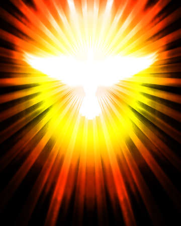 shining dove with rays
