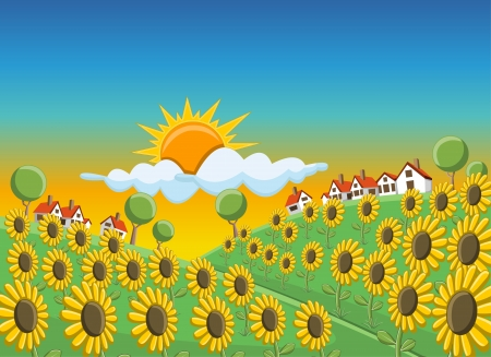Sunset over beautiful sunflowers field on green hill with houses Stock Vector - 16552357