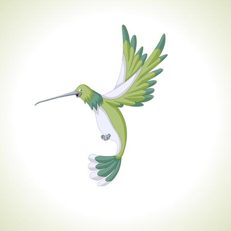 birds cartoon: Cute green cartoon hummingbird flying