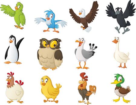 Group of cartoon birds.