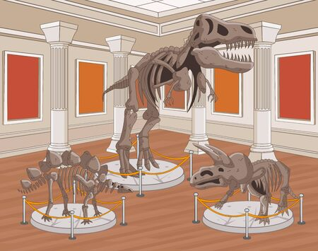 Group of dinosaur skeletons at archeology museum. 일러스트