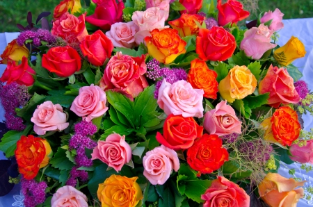 A bouquet of multi-coloured roses photo