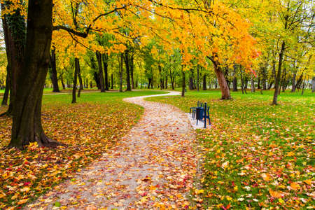 autumn park: Autumn park with colorful leaves and winding road