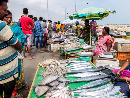 Chennai, India - December, 24th, 2017. Local fish market on the road near the beach in Chennai, India.