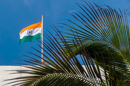 Indian flag on the roof, blurred palm tree in foreground.